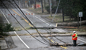 An image of a blocked off street with trees and power lines on the road. One worker in a reflective vest is on the road surveying the damage.