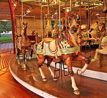 Picture of carousel horse