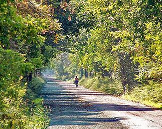 Parks Lehigh Valley Trail Park Monroe County Ny